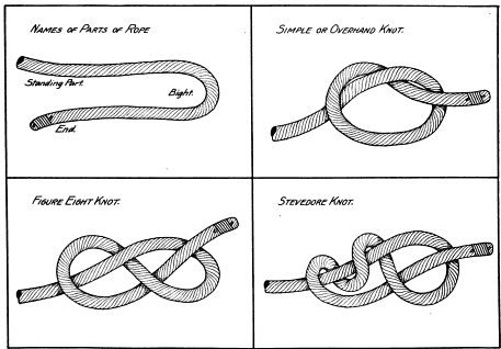 Parts of a rope, overhand knot, figure eight knot, stevedore knot