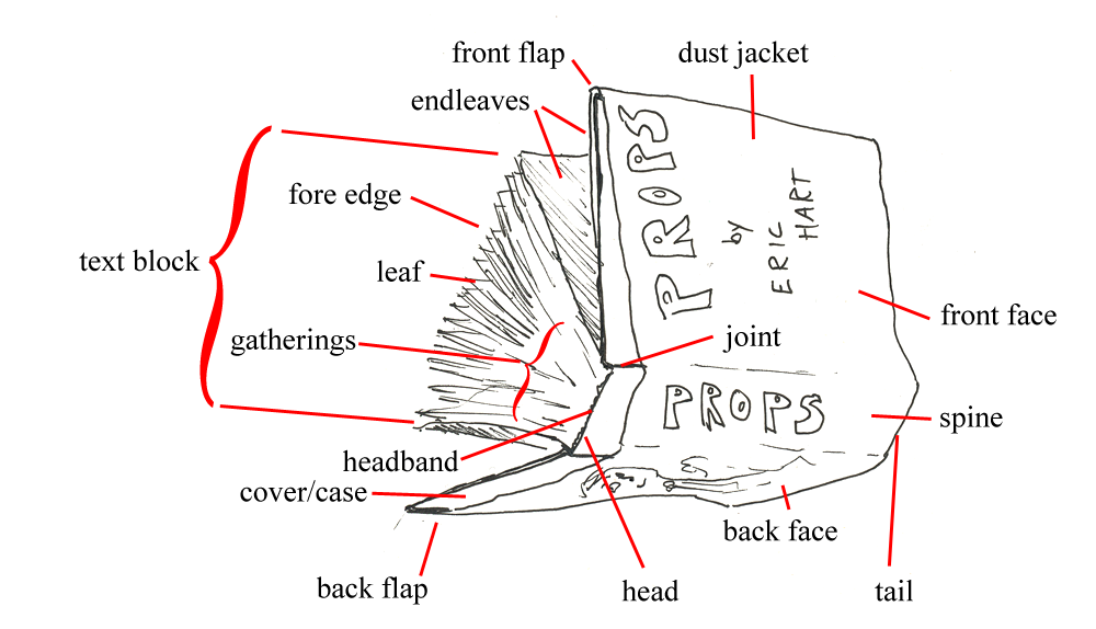 Diagram of the parts of a book