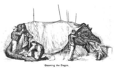 Grooming the Dragon