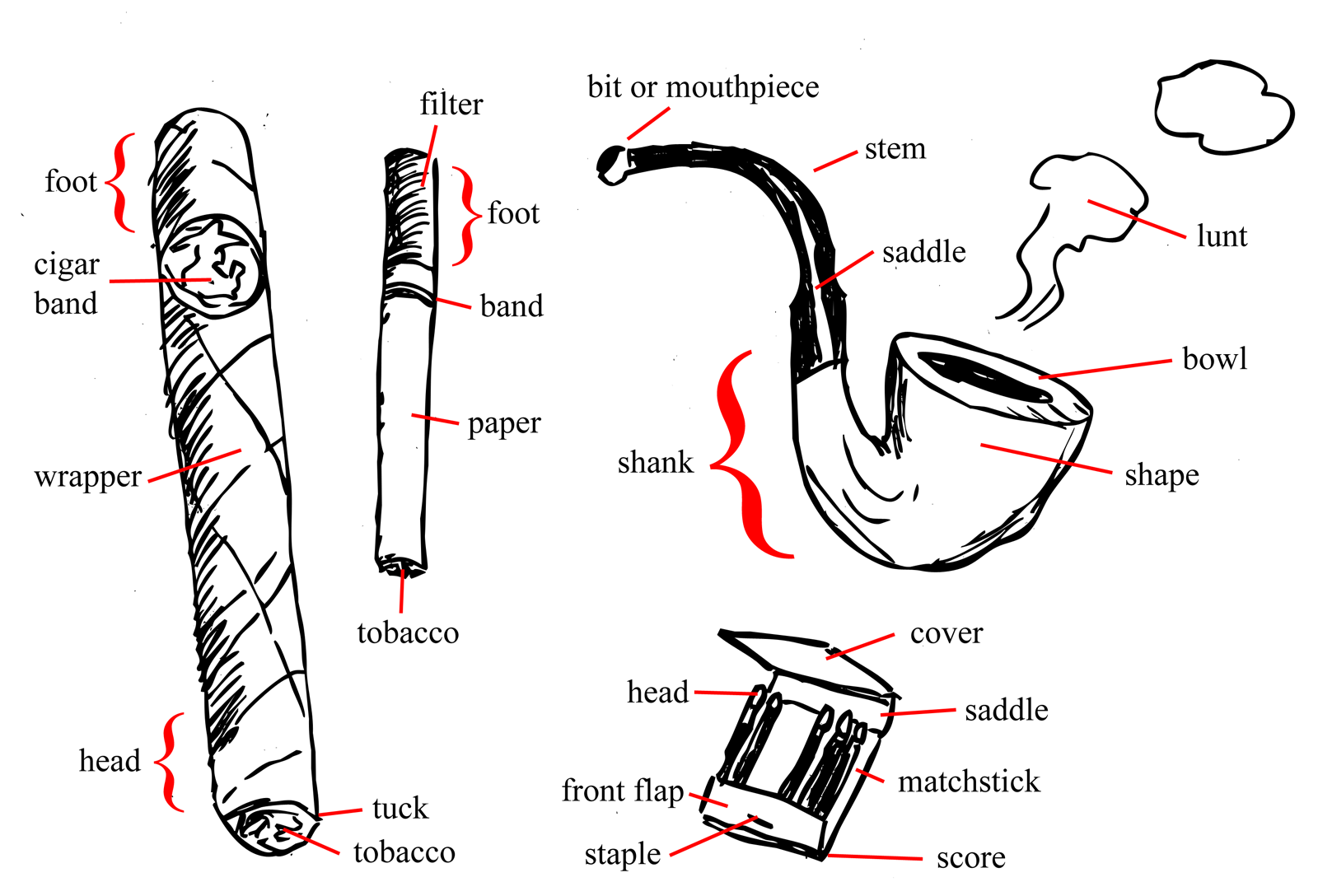 Names of the parts of a cigar, cigarette, pipe and matchbook
