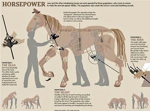 War Horse puppet