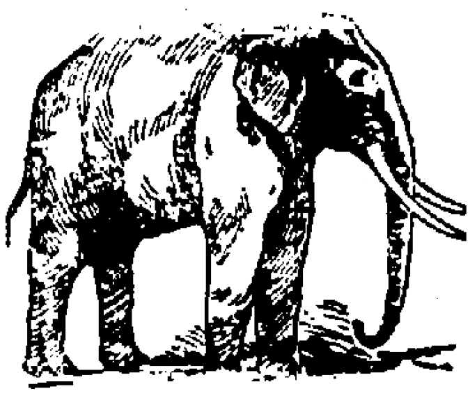 Framework of the Elephant