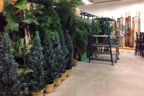 A tree-mendous selection